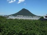 夏の飯野山