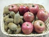 キュウイリンゴ収獲