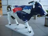 14 レーサー牛