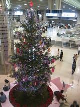 成田空港のクリスマスツリー