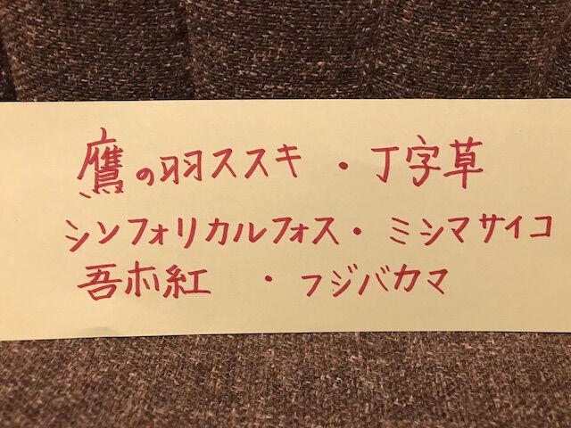 ネーム(ブログ用)