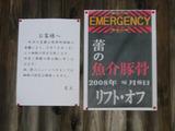 20080607_蕾_紹介