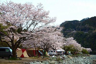 オート キャンプ 野原 場 青