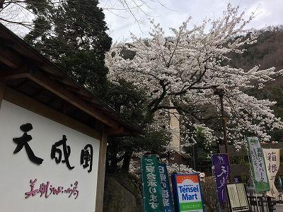 写真 2015-03-29 13 48 20_s