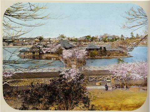 上野・不忍池の弁天堂