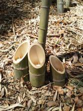 090402水とロウソクの入った竹灯籠