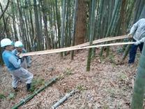 竹稈利用で竹を裂く