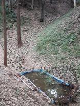 空堀 天の川 (2)