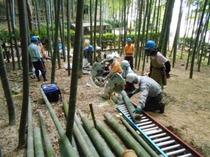 縮小 竹灯籠製作