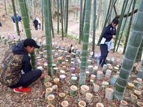 LED竹灯籠