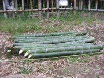 080605プール竹水たっぷりの竹筒