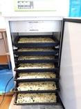 乾燥機7段に千切り味付
