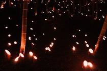 121006竹と竹灯籠