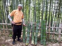 縮小 竹水採水 (2)