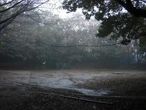 081116本丸広場