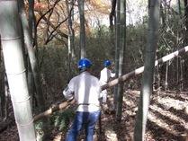 081206こどもの国枯竹の整備