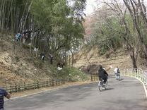 080329サイクリングコースと竹灯籠設置