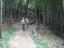 080914間伐竹竹の運搬