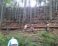 縮小160528小机間伐 と竹足場の改修