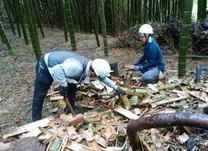 竹灯籠割り