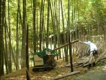 090509枯竹のチップ化処理