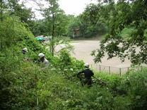 200623ハチク林の整備