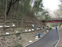 080325竹灯籠設置