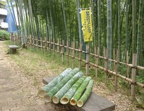 縮小 竹水筒