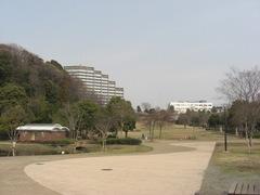 080312山田富士公園