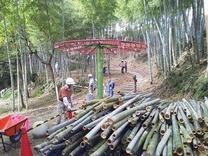 120915竹灯籠材間伐