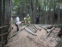 080915小机 空掘上の間伐材