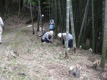 080928竹灯籠設置1