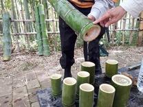 縮小 竹水採水 (4)
