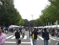 081102日本大通り