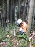 縮小 竹水採水 (1)