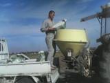 土壌改良剤