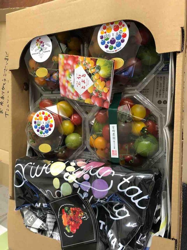 ミヤザキファーム宮崎修太の宝石トマト