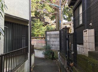 kawasuji (1)