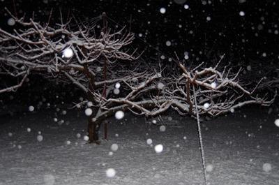 雪1802020209s-IMGP1701