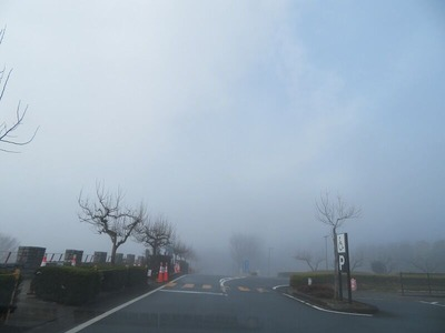 16霧の中第一駐車場m-IMG_1182