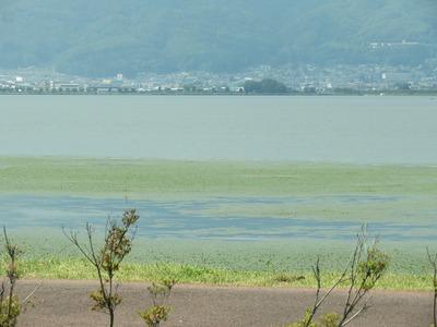 諏訪湖170623s-IMG_8187