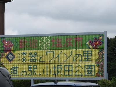 小坂田公園s-IMG_2896