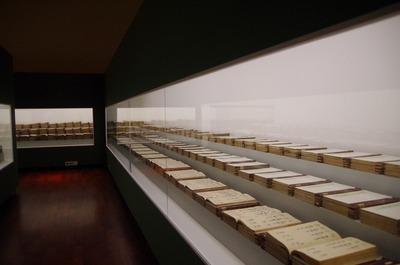 山梨県立博物館171104s-IMGP9418