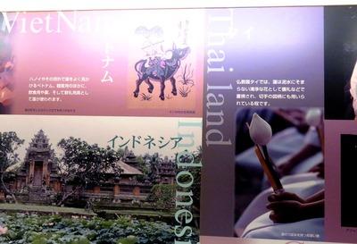 世界の蓮の文化誌IIMG_3226