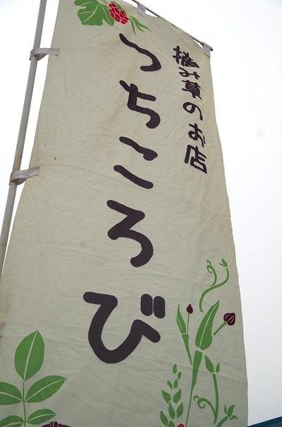 s-IMGP2520