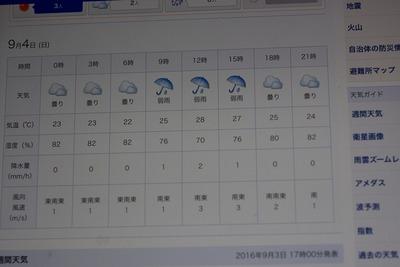 雨だってよs-IMGP2415