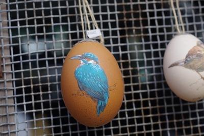 卵s-IMGP9013
