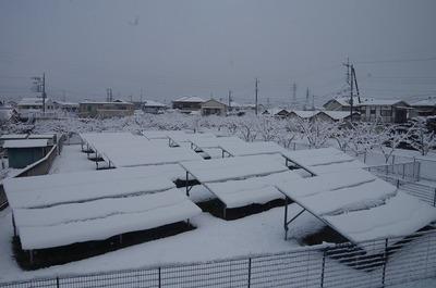 雪1802020731s-IMGP1702