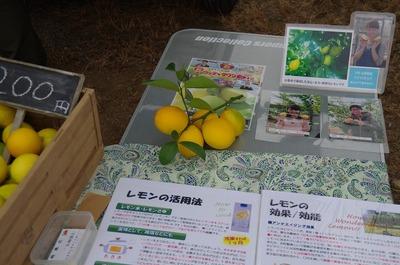 レモンs-IMGP8155