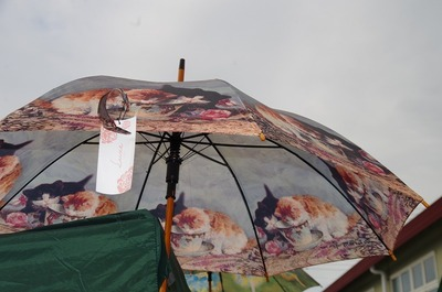 傘s-IMGP8176